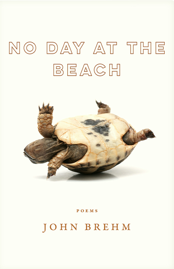 NO DAY AT THE BEACH by John Brehm